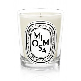 Mimosa scented candle 190gr